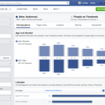Facebook Introduces Audience Insights Tool