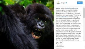 Behind the scenes National Geographic Instagram